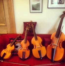 Image viols on sofa